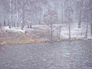 Влияние на клев рыб температуры воды и