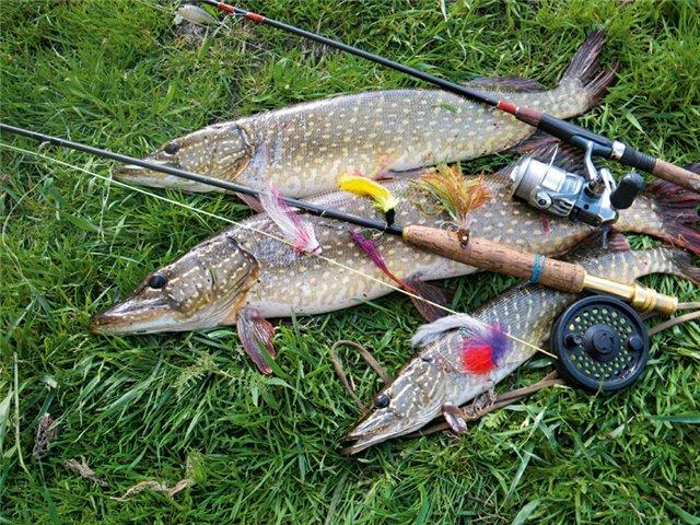 где лучше всего рыбалка в июне