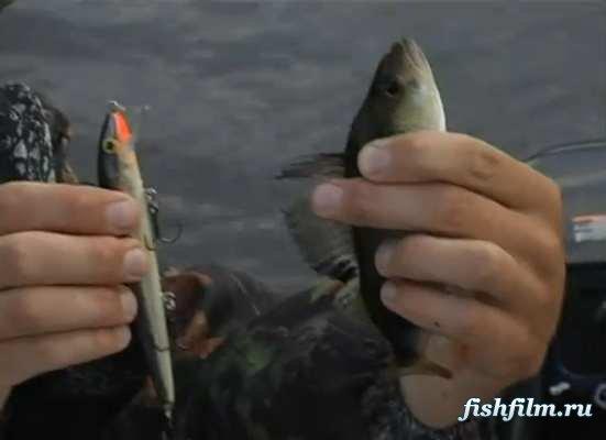 рыбалка в васильево