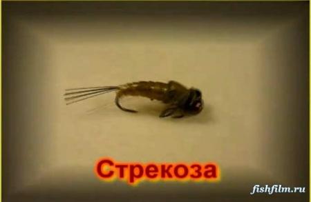 В этом видео мы расскажем вам, какие бывают.  Мормышка. мормышка. для зимней рыбалки.