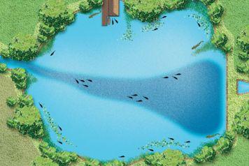 Изучаем рельеф дна. Как найти бровку или яму?