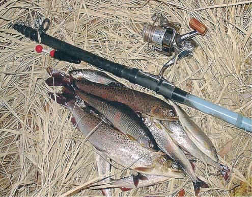рыбалка снасти для рыбалки на горной реке