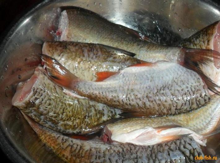 Консервы из рыбы в домашних условиях с фото