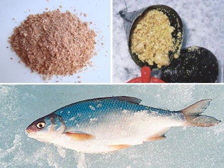 подкормка для рыбы поплавок слива