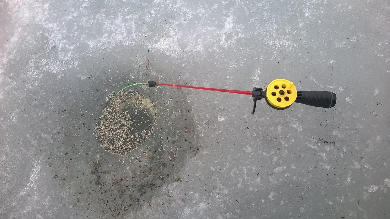 прогноз на рыбалку на белгородском водохранилище