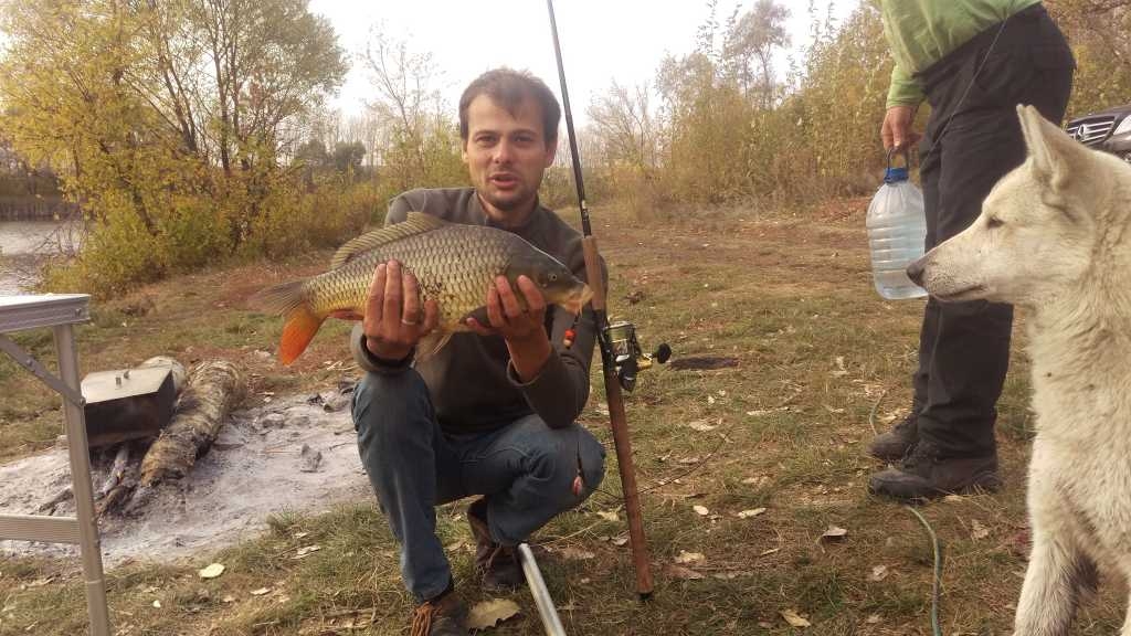губкин рыбалка клев