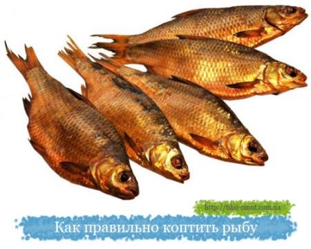 нерест толстолоба в ростовской области