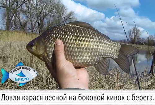 рыбачим на карася весной