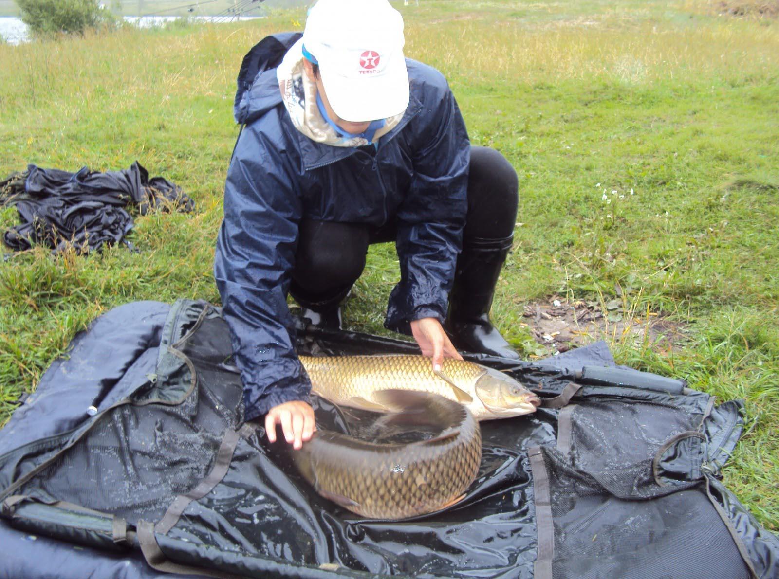 рыбалка в белгородской области форум отчеты