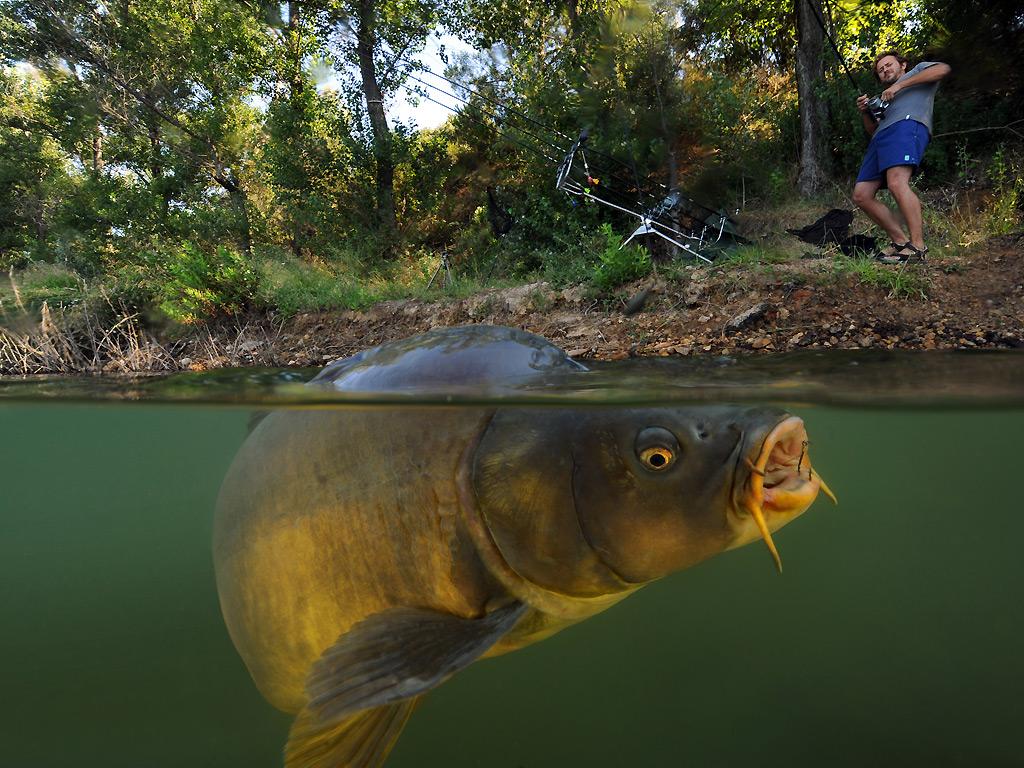 видеокамера в воде при ловле рыбы